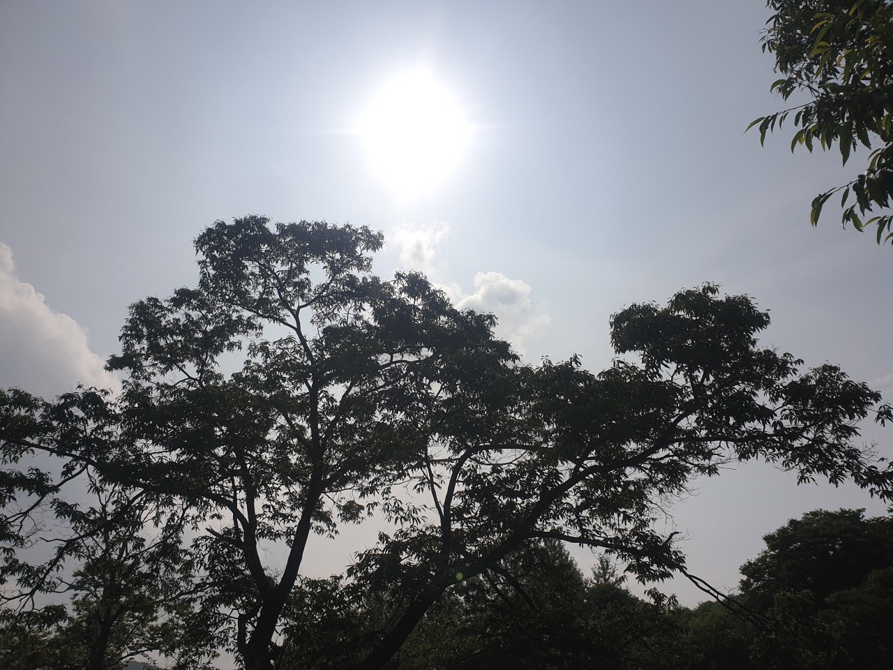 [꾸미기]홍천연기캠프_내이야기#통일-전체 사진-33386761769.jpg